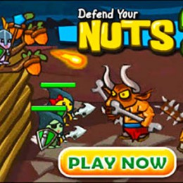 Defend your nuts cover