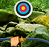 بازی آنلاین تیراندازی به اهداف پنهان در جنگل